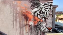 White Tiger street art, Sonny Sundancer