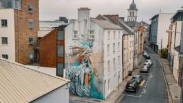 Sonny painted large street art of girl and white tiger in Ireland as part of the Waterford Walls Festival