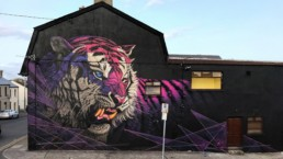Pink and purple tiger street art pained by Sonny in Ireland as part of the Waterford Walls Festival