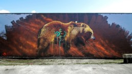 Sonny's grizzly bear mural painted in the streets of Cambridge, Ontario, as a part of the Cambridge Street Art Festival