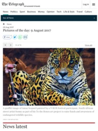 The Telegraph Pictures of the day featuring Sonny's Amur Leopard Mural in Vladivostok Russia