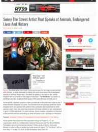 The Awesome Daily article on Sonny's street art to raise awareness for endangered wildlife