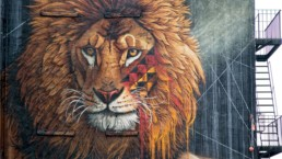 New York Lion, painted by street artist, Sonny, to launch his global mural tour titled To The Bone