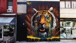 Sonny teamed up with Discovery's Project CAT to paint this tiger mural in SoHo New York on Lafayette Street