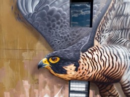 Close up of Sonny's street art mural of a peregrine falcon, painted in Linden, Johannesburg South Africa