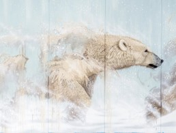 Close up of Polar bear mural painted by Sonny in Pisa, Italy to make a statement of hope with regards to climate change