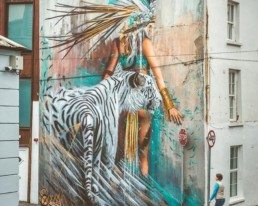 Sonny Street Art Mural of girl and white tiger painted in the streets of Ireland for Waterford Walls Festival 2018