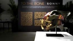 Setup of Sonny's To The Bone exhibition in New York
